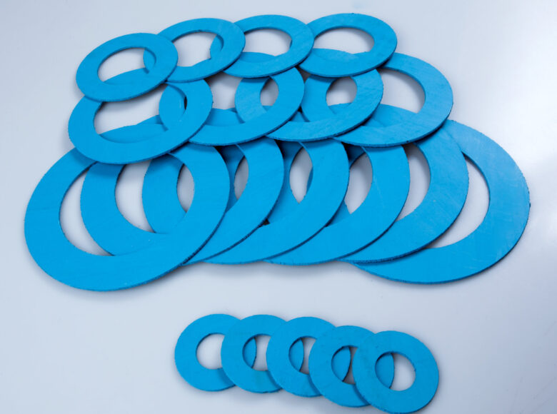 Gasket and flanges for mechanical seal